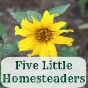 five little homesteaders